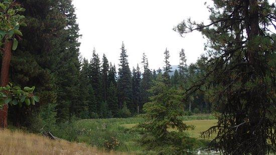 Ponderosa State Park: Lily Trailhead Marsh