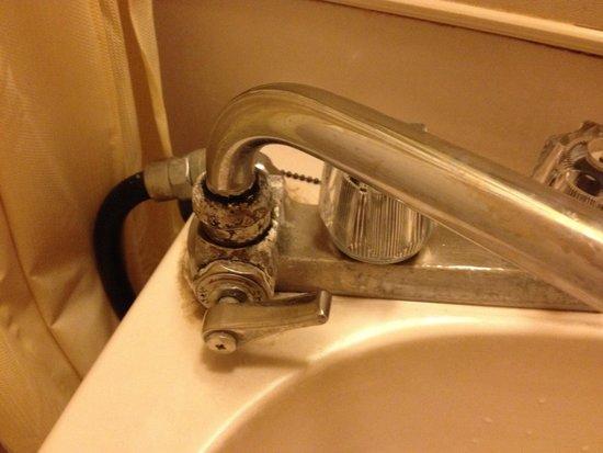 Lake Land Hotel Mizunosato: Horrible bathroom!