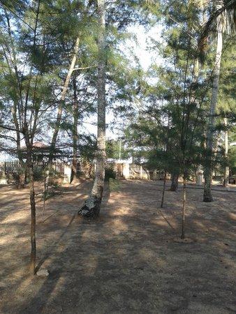 Anjung Pantai Seberang: Chalet area