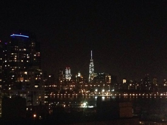 Wythe Hotel: Awesome view from the terrace!
