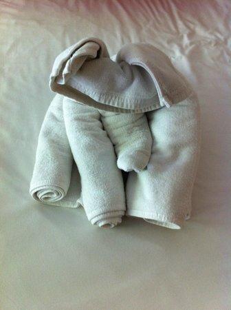 Aonang Goodwill: towel