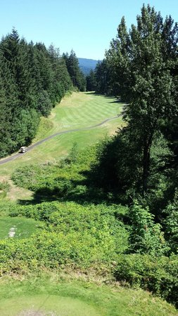 Skamania Lodge: gorgeous grounds