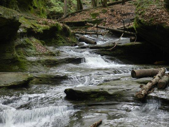 Hocking Hills State Park : Old Mans Cave