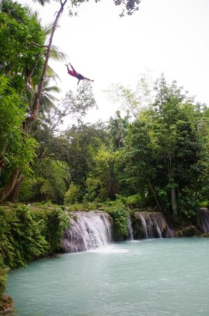 Cambugahay Falls : Local guy jumped from the top of a tree!  Superman dive.