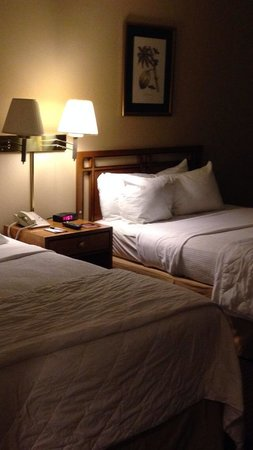 LaGuardia Plaza Hotel - New York : 2 beds hair in the bed on the right!
