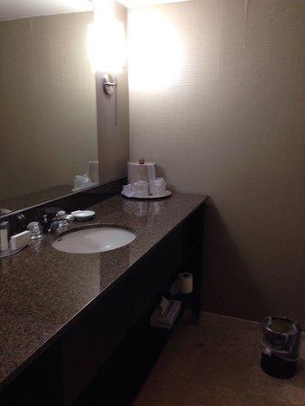 LaGuardia Plaza Hotel - New York: Vanity
