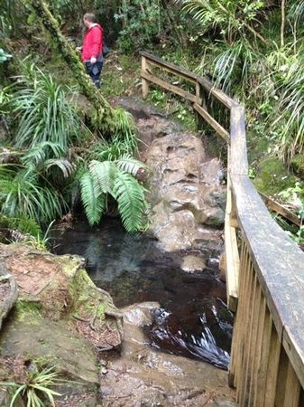 Fairy Falls: slippery stream to ford