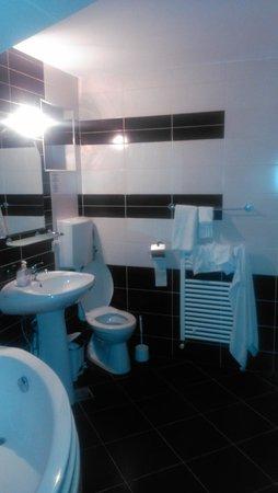 Pensiunea Belascu Sibiu: Bathroom