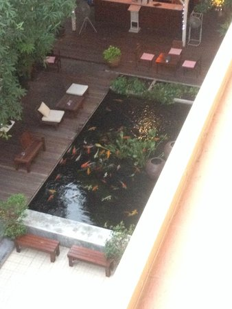 Feung Nakorn Balcony Rooms & Cafe : Ground floor area to relax
