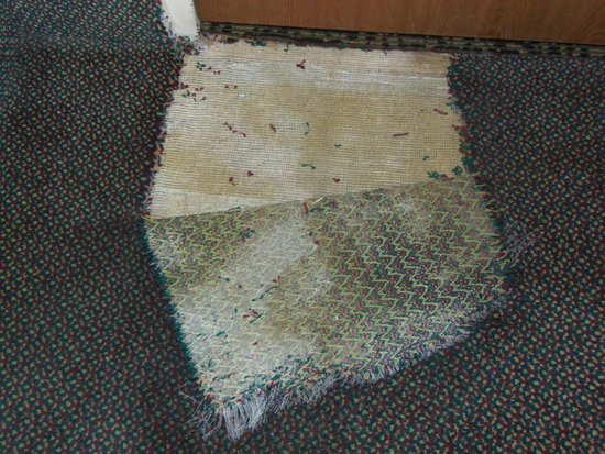 FairBridge Inn & Suites Idaho Falls: Carpet inside our room by door