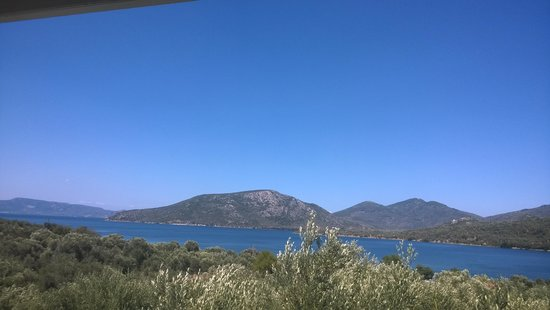 Gera's Olive Grove: view from one of the appartments