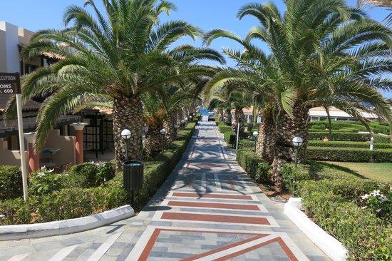 Aldemar Knossos Royal : Аллея до пляжа