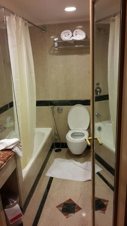 Ramada Plaza Palm Grove: Bathroom