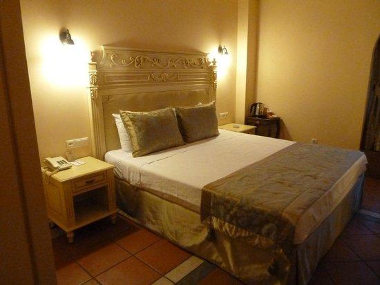Sultanahmet Palace Hotel : Doppelzimmer