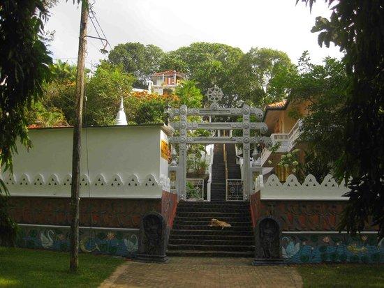 Μπεντότα, Σρι Λάνκα: This is the place where I usually take my students for yoga meditation