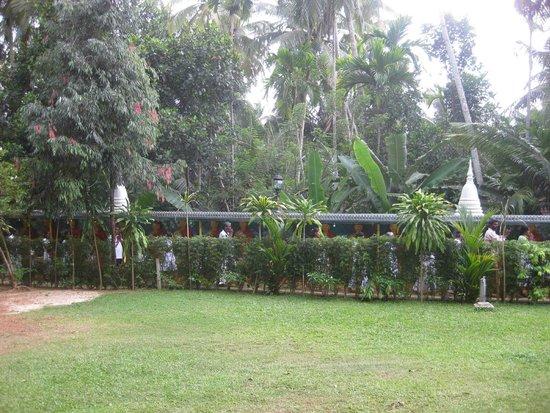 Μπεντότα, Σρι Λάνκα: Temple