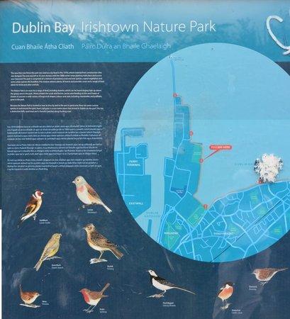 InterContinental Dublin: Spot ornitho , a pied de l'hôtel, at a walking distance