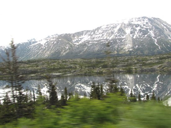 Chilkoot Charters & Tours : Spectacular scenery once aboard the van