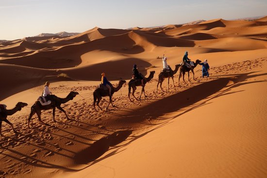 Sahara Tours 4x4 : Camel ride in the sahara