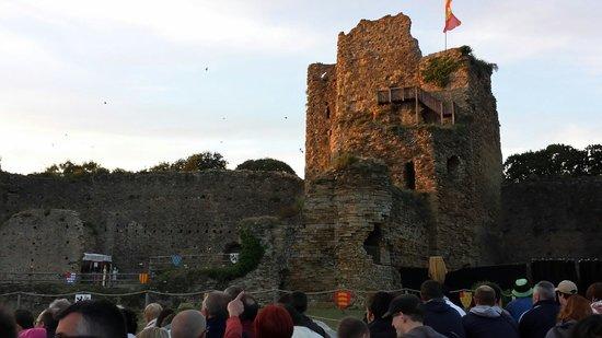 Chateau de Talmont-Saint-Hilaire : Il faut etre grand pour voir.