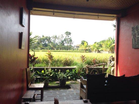 Bibianu Cafe: The view
