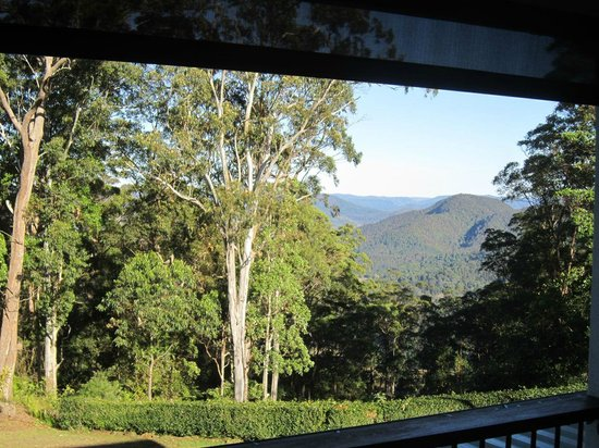 Mapleton Falls Accommodation: view from our balcony
