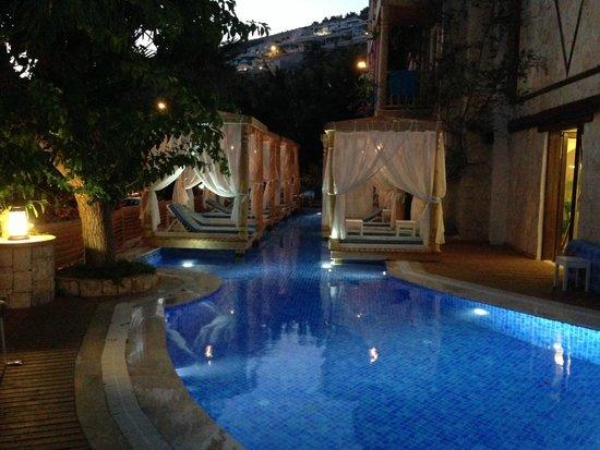 The Elixir: Pool Decks