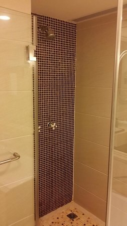 Sheraton Guilin Hotel: Shower