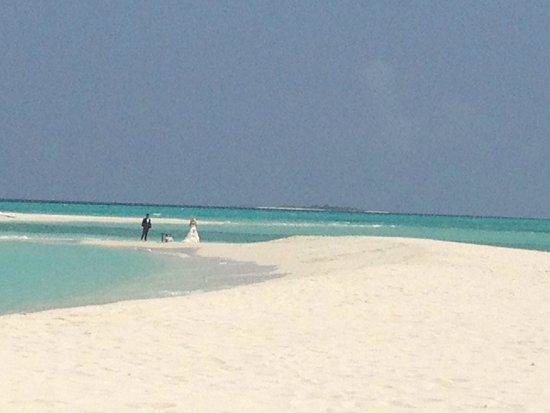 Palm Beach Resort & Spa Maldives: Palm