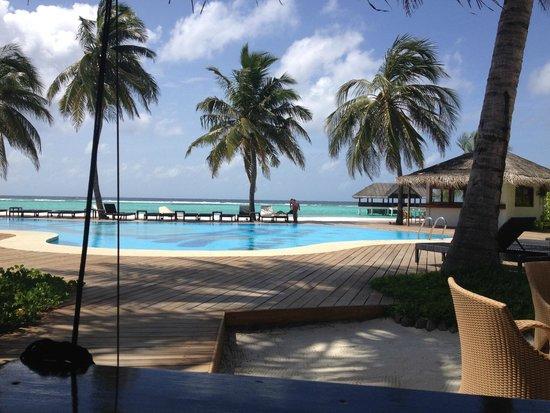 Palm Beach Resort & Spa Maldives : Palm