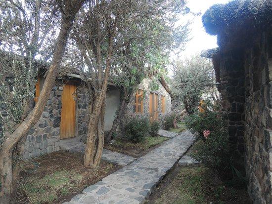 Casa Andina Standard Colca: i vialetti tra le camere