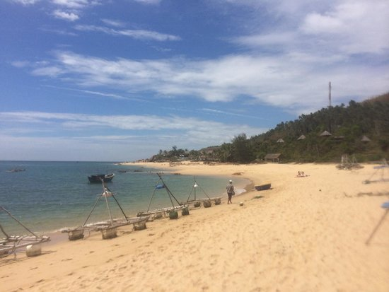 Life's a Beach: The beach
