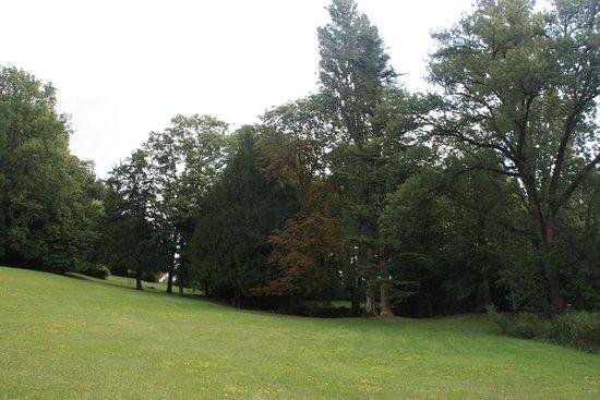 Chateau de Vaugrignon : le parc