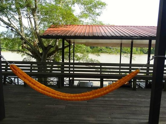 Kinabatangan Riverside Lodge: hamacs