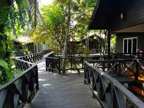 Kinabatangan Riverside Lodge: les chalets