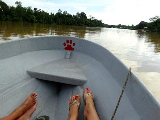 Kinabatangan Riverside Lodge: excursion