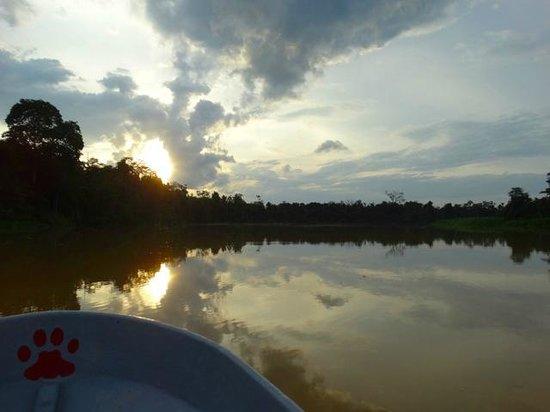 Kinabatangan Riverside Lodge: coucher du soleil