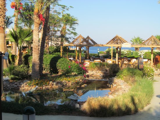 Savoy Sharm El Sheikh: beautiful, well kept grounds