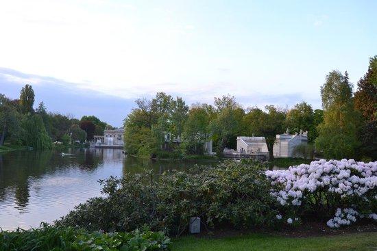 Parc Łazienki : Lazienski park