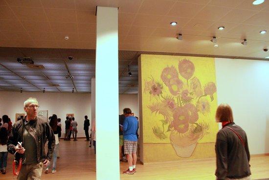 Musée van Gogh : hall