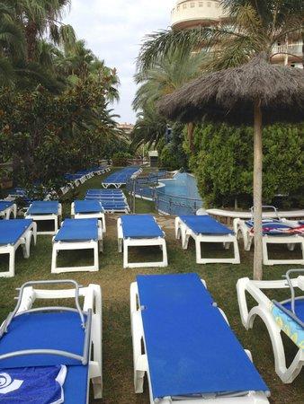 Hotel-Aparthotel Dorada Palace: Shady Area next to family pool