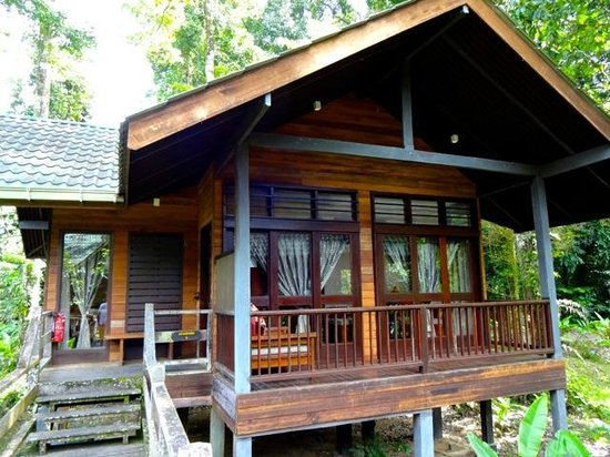Borneo Rainforest Lodge: chalet standard 2