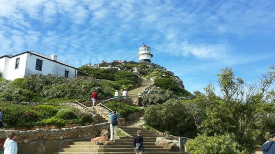 Cape Point Nature Reserve: the up hill walk