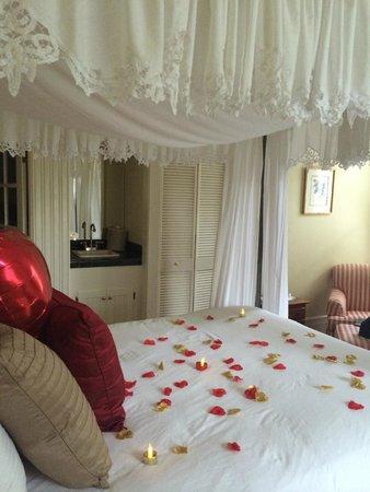 Centrella Inn: Garden room