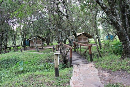 Kimana Camps: L'ambiente che circonda le tende è meraviglioso