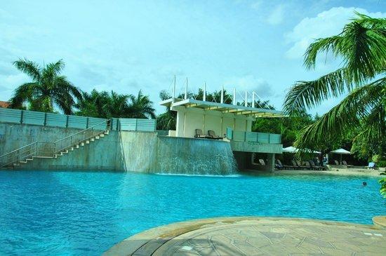 Palm Meadows Club: Pool Area