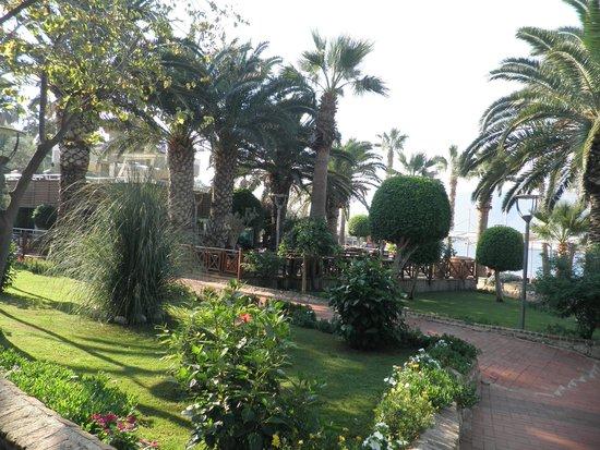 Ersan Resort & Spa: vue de chambre