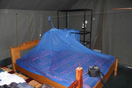 """Kimana Camps: Letto/""""Scaffale""""/interruttore - potrebbero migliorare certi aspetti"""