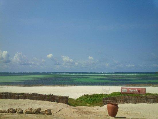 Garoda Resort: The view of the ocean