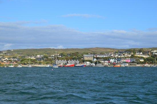 Whale Watch West Cork : la cote